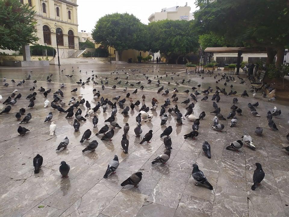 Πλατεία Αγίας Αικατερίνης Ηράκλειο